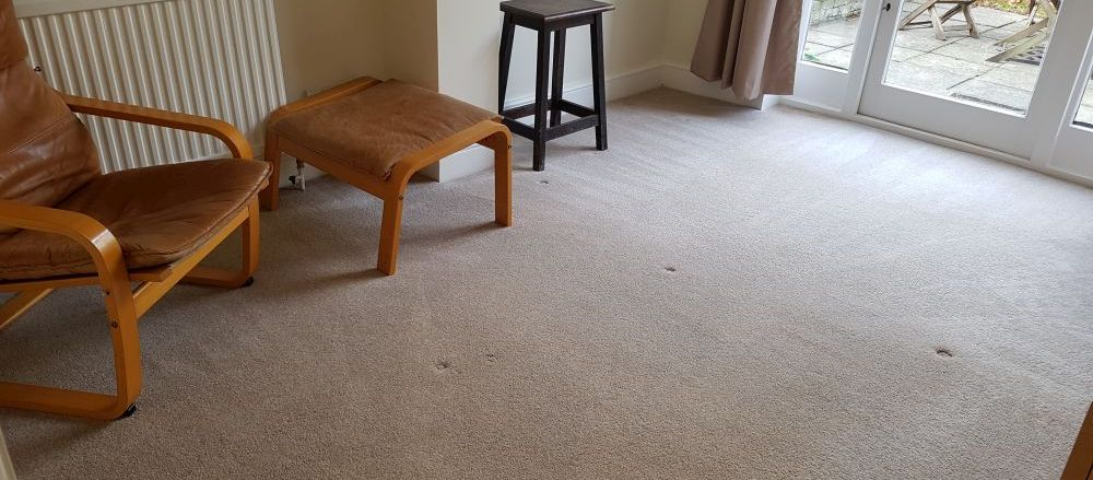 rug cleaners  RM1