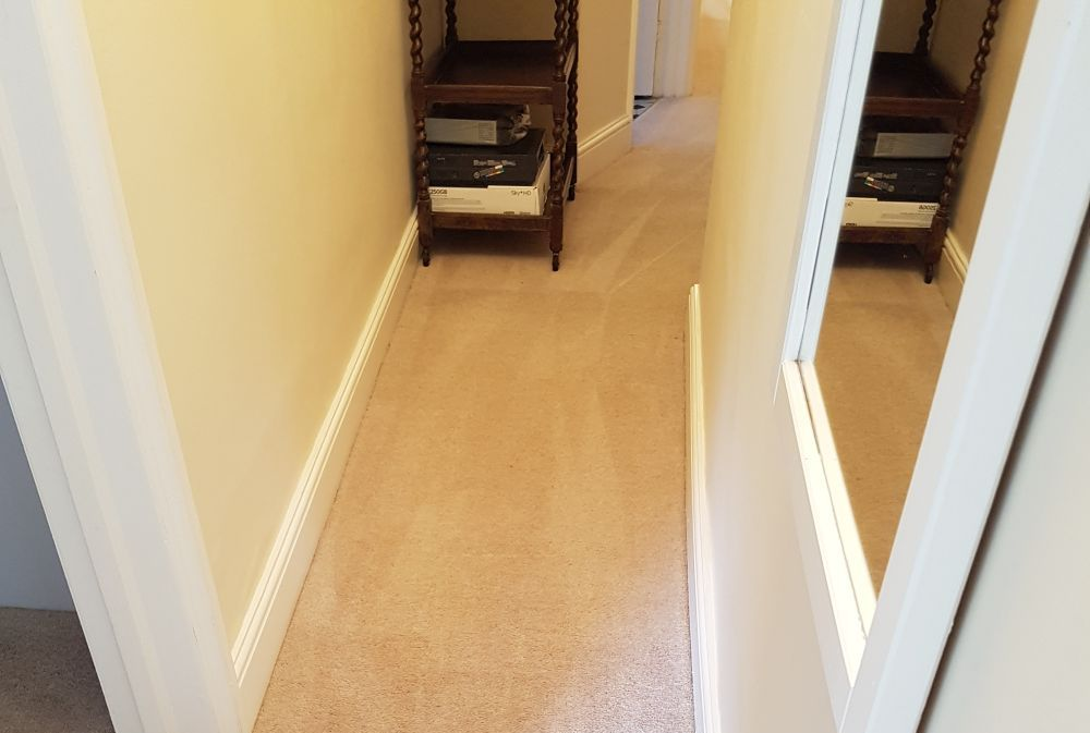 rug cleaners  NW10