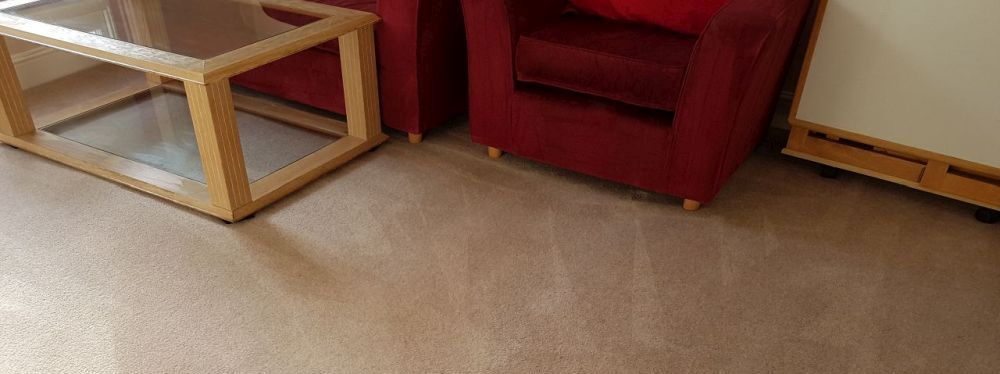 Carpet Cleaning E1