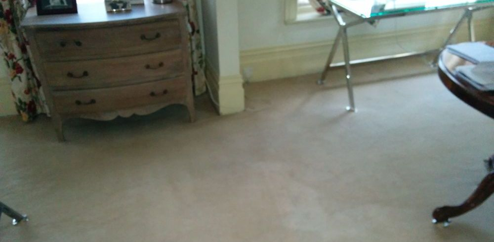 Carpet Cleaning EC3