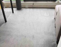Carpet Cleaning SE15